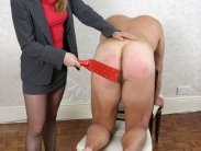 May wonder Domestic discipline female domination both